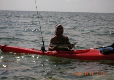 Agenzia/operatore Turistico Escursioni In Kayak